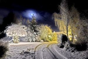 winter background wallpaper