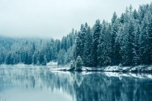 winter desktop backgrounds free