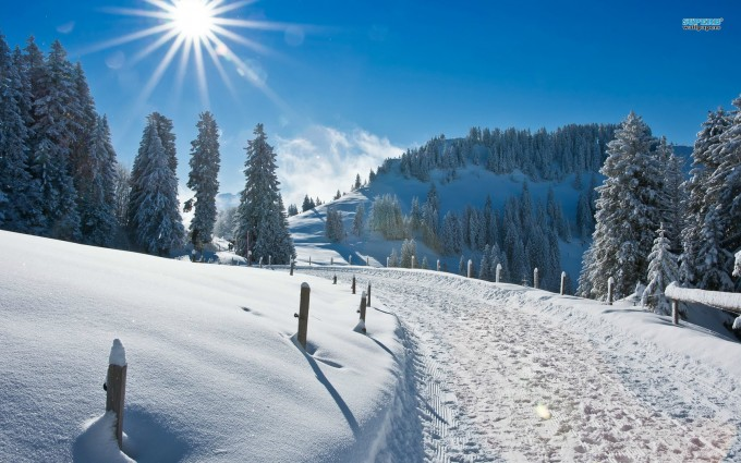 winter images wallpaper