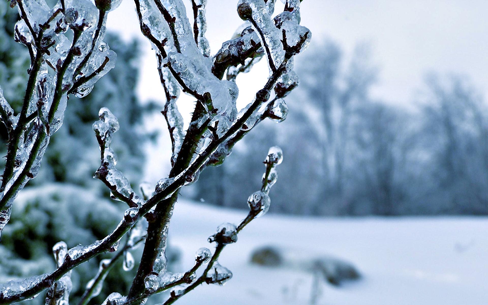 winter pics for wallpaper
