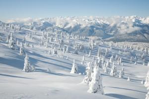 winter wallpaper download