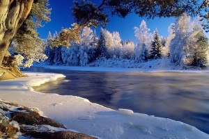 winter wallpapers free