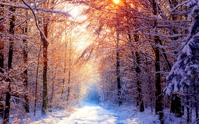 winter wallpapers hd fascinating