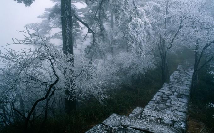 winter wallpapers hd free