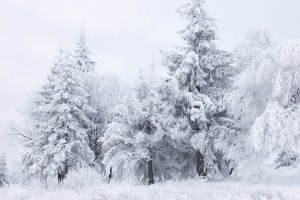 winter wallpapers hd high