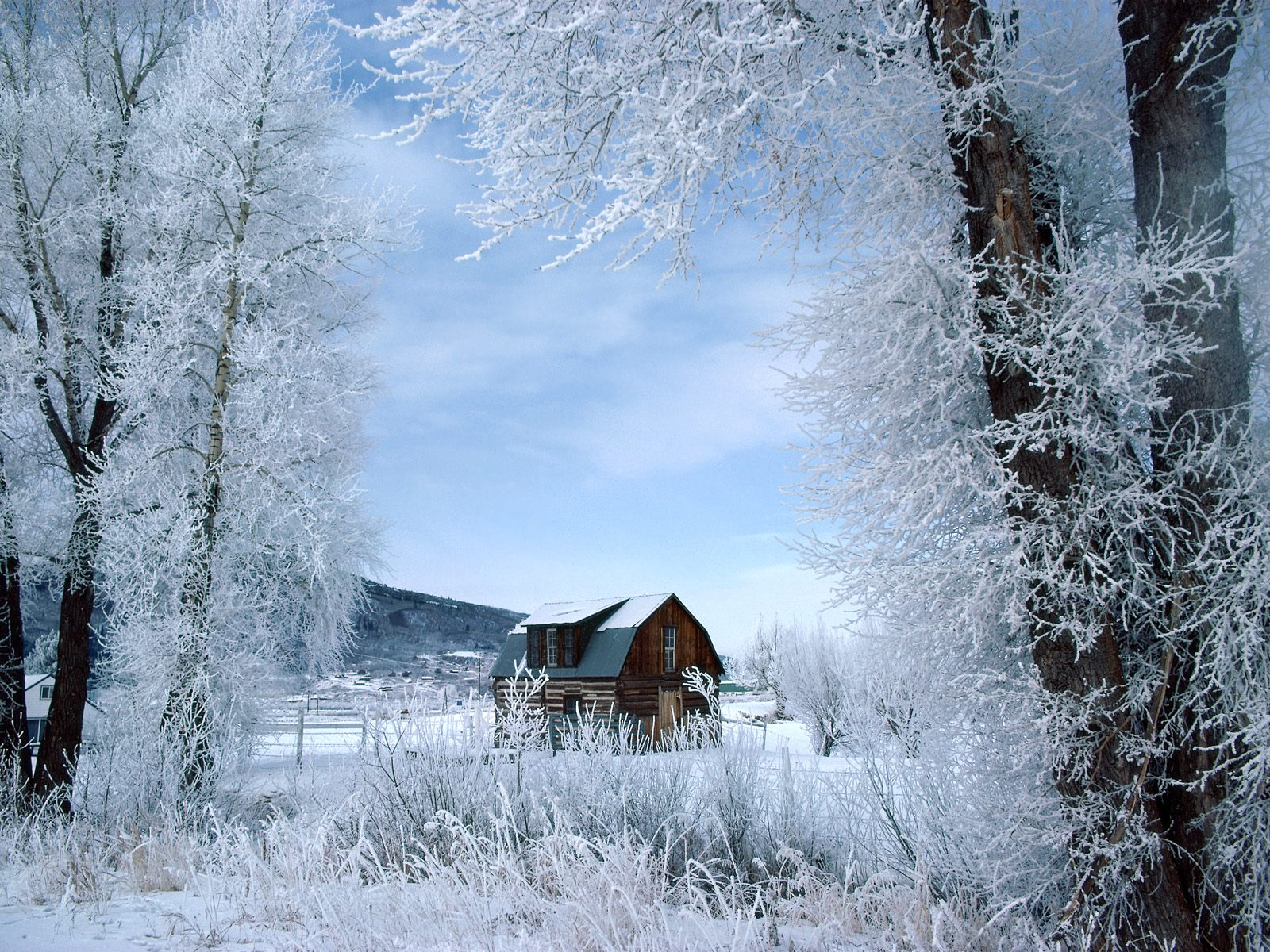 winter wallpapers hd home