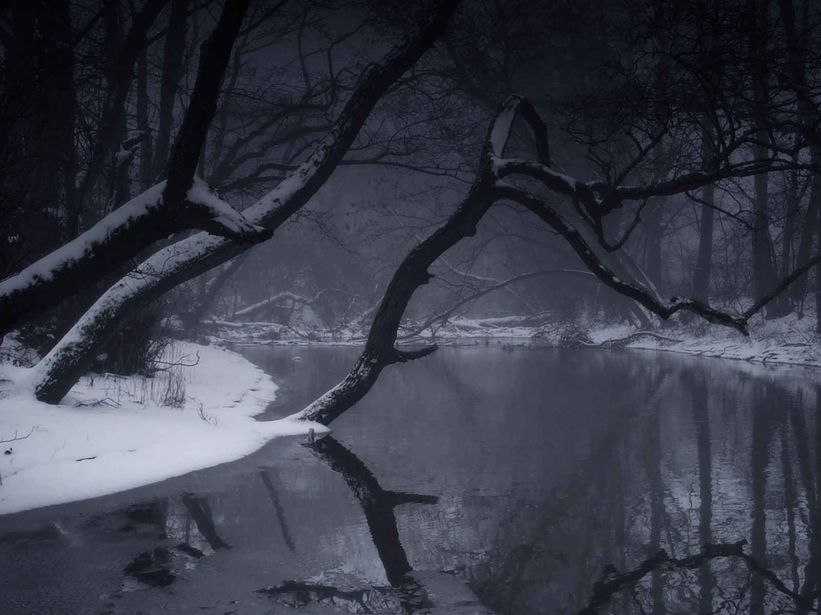 winter wallpapers hd nature