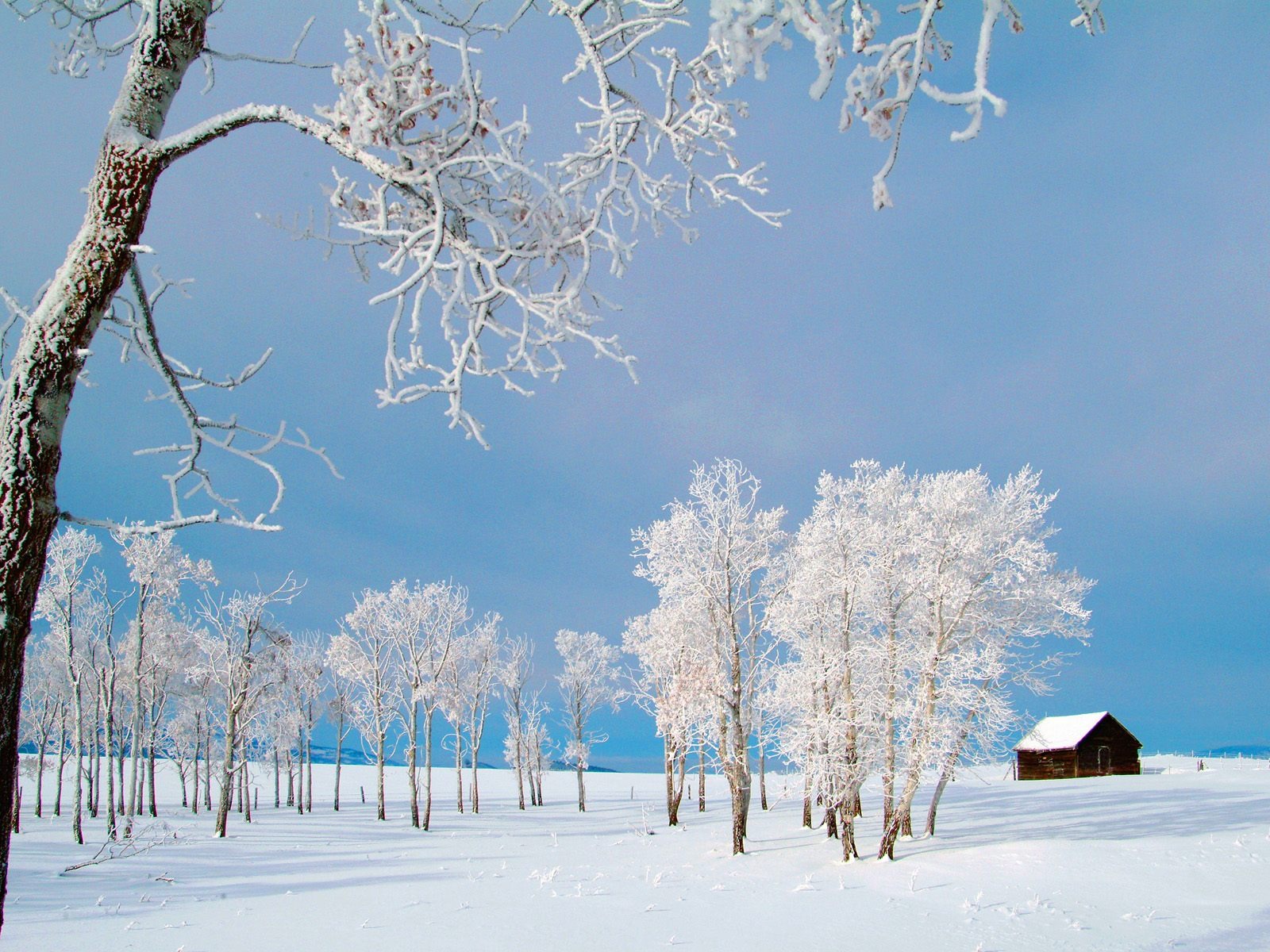 winter wallpapers hd tablet