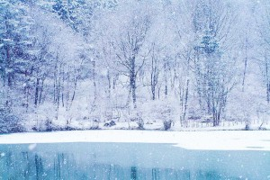 winter wallpapers hd white