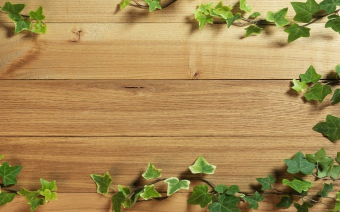 wood wallpaper green
