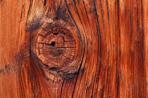 wood wallpaper lovely
