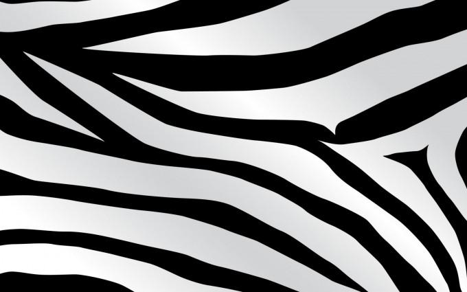 zebra print wallpaper