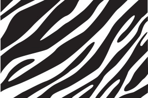 zebra print wallpaper for walls