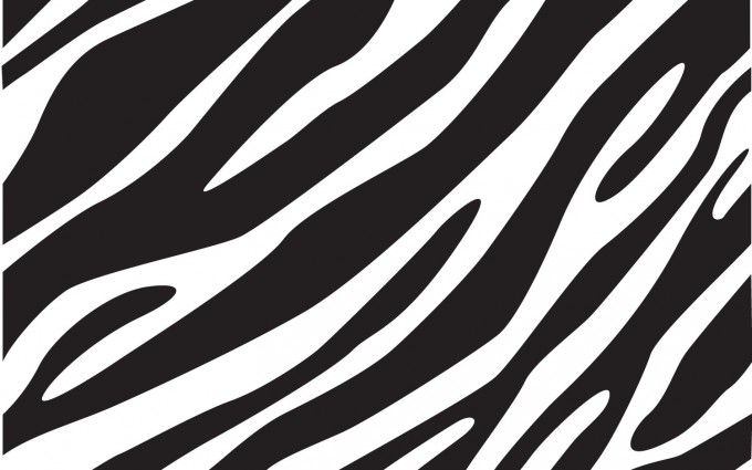 zebra print wallpaper for walls