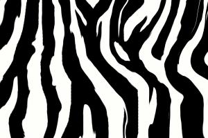 zebra print wallpaper uk