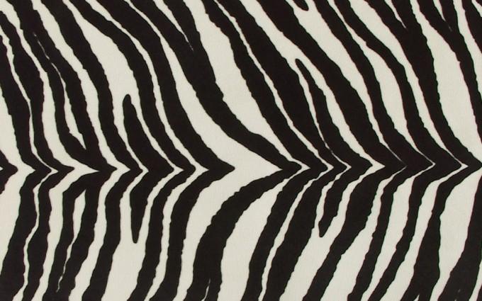 zebra print wallpapers bedroom