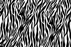 zebra print wallpapers free