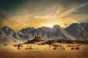 africa wilf life wallpaper