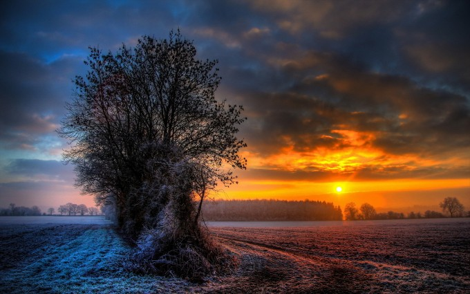amazing sunset wallpapers frosty