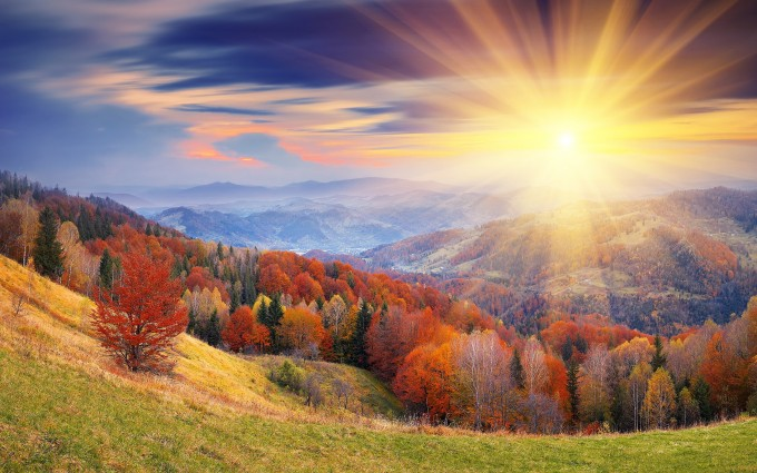 autumn andriod