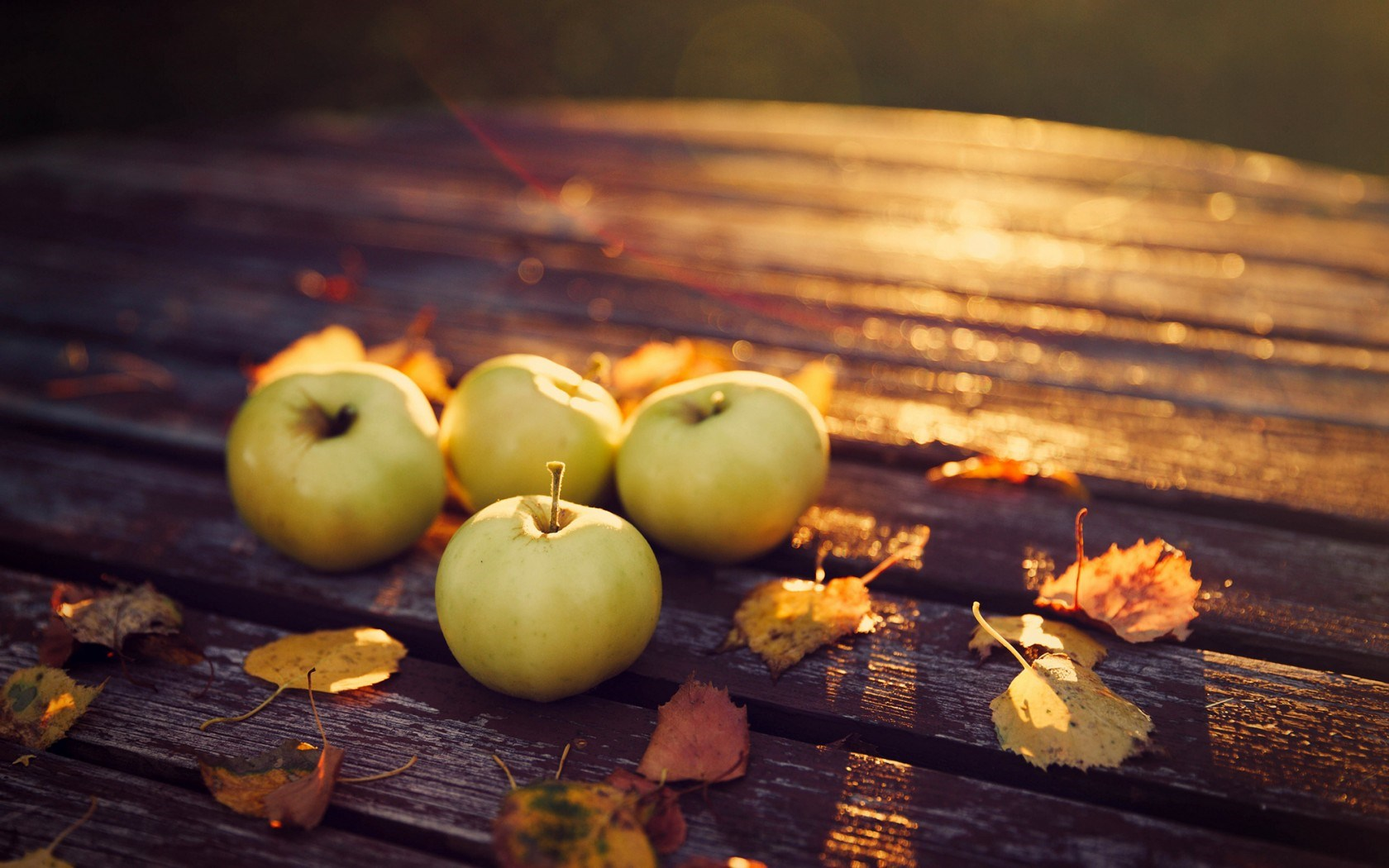 autumn apples wallpaper