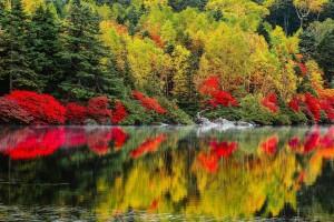 autumn lake pictures