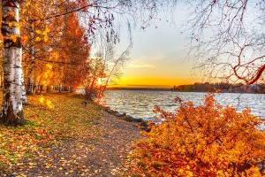 autumn lake sunset picture