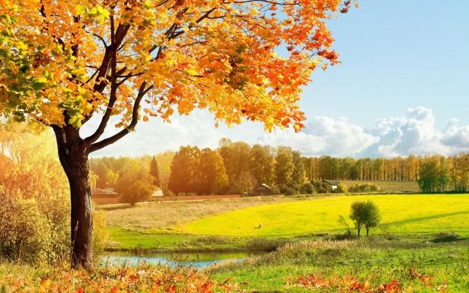 autumn landscape pictures