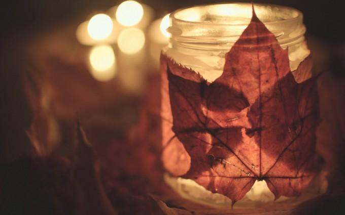 autumn leaf images