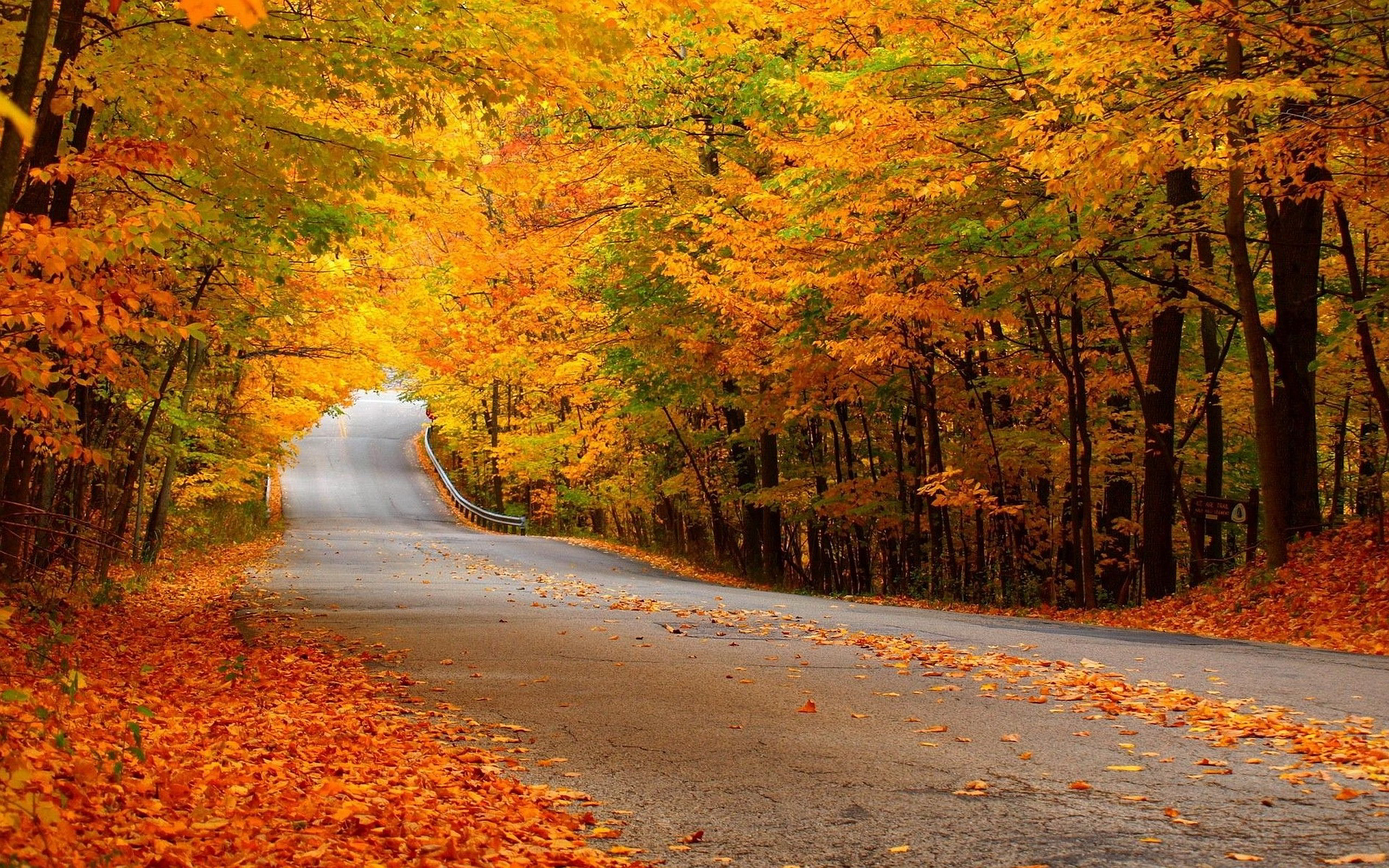 autumn nature download