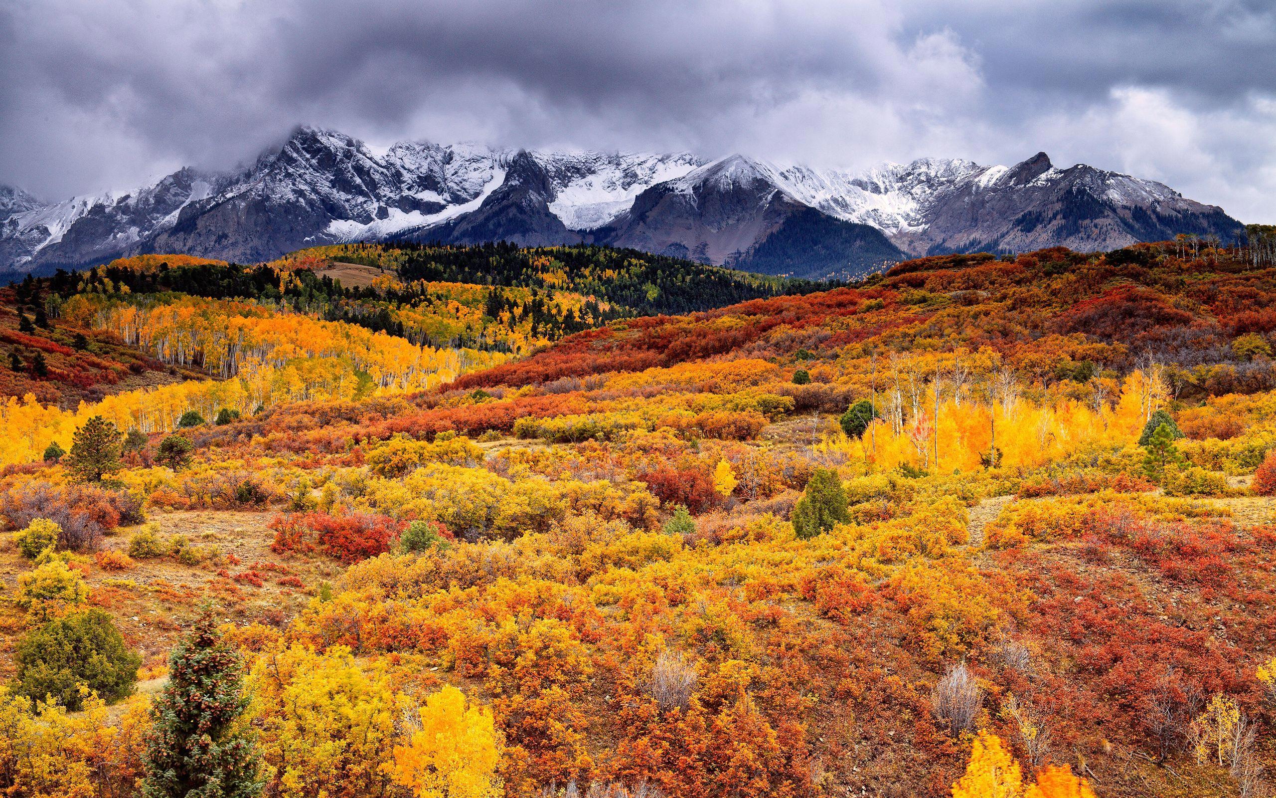 autumn nature hd