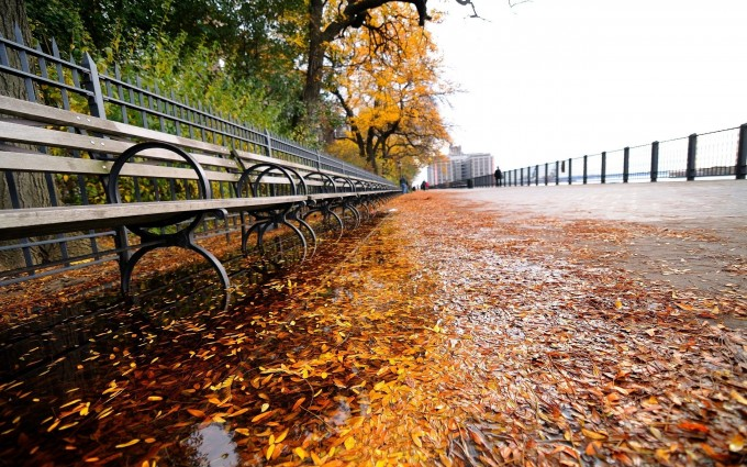 autumn new york city