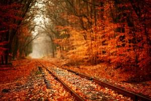 autumn railway track