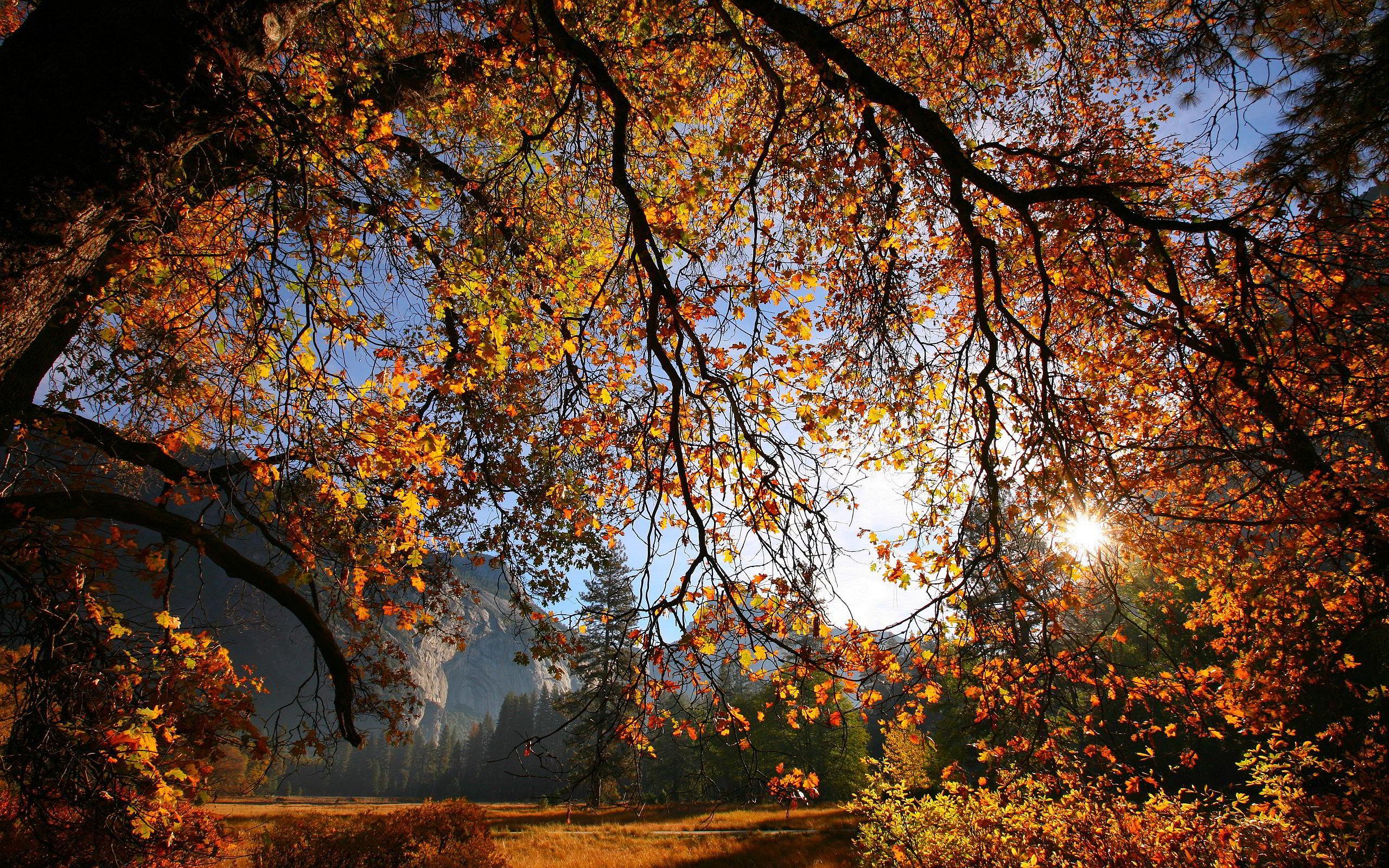 autumn sunset pictures