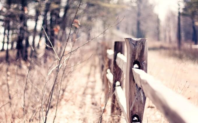 autumn wallpaper fence