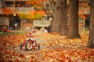 autumn wallpaper for desktop