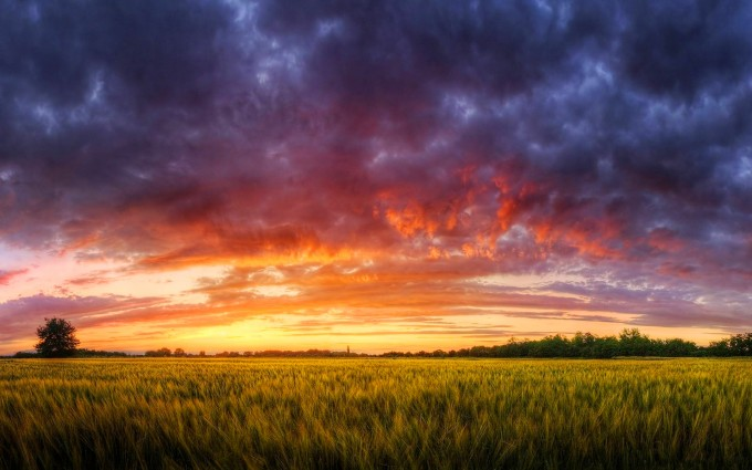 awesome sunset wallpapers fields
