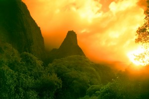 awesome sunset wallpapers rainforest