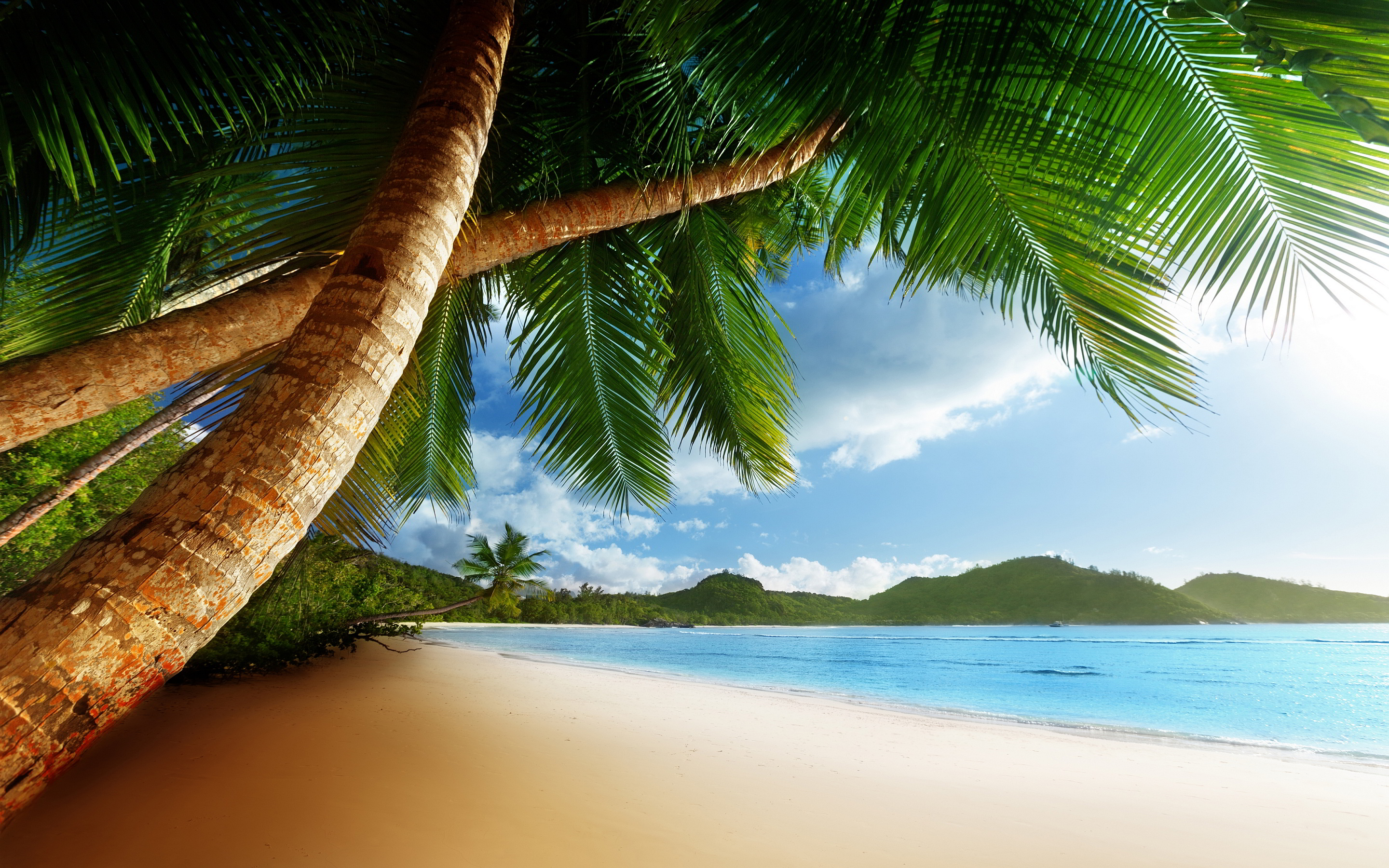 Beach Pictures Hd Wallpapers: Beach Caribbean - HD Desktop Wallpapers
