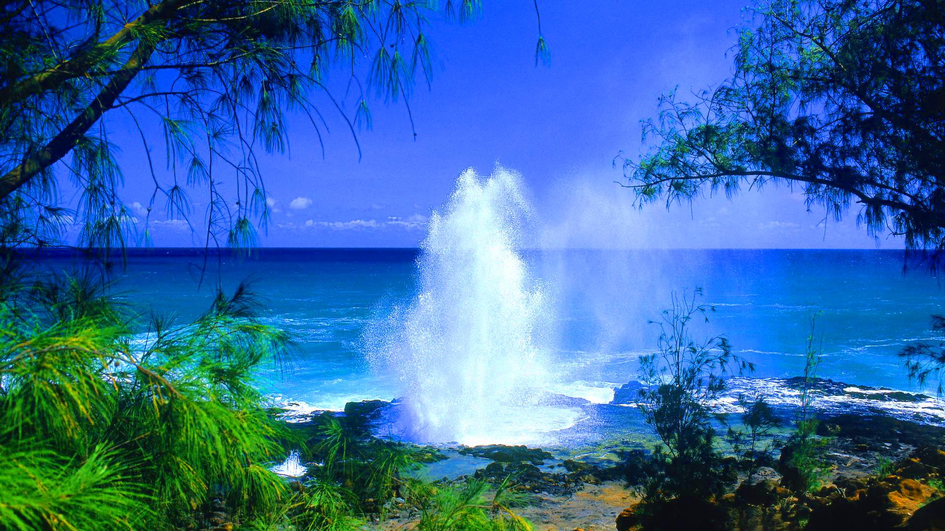 beach kauai hawaii