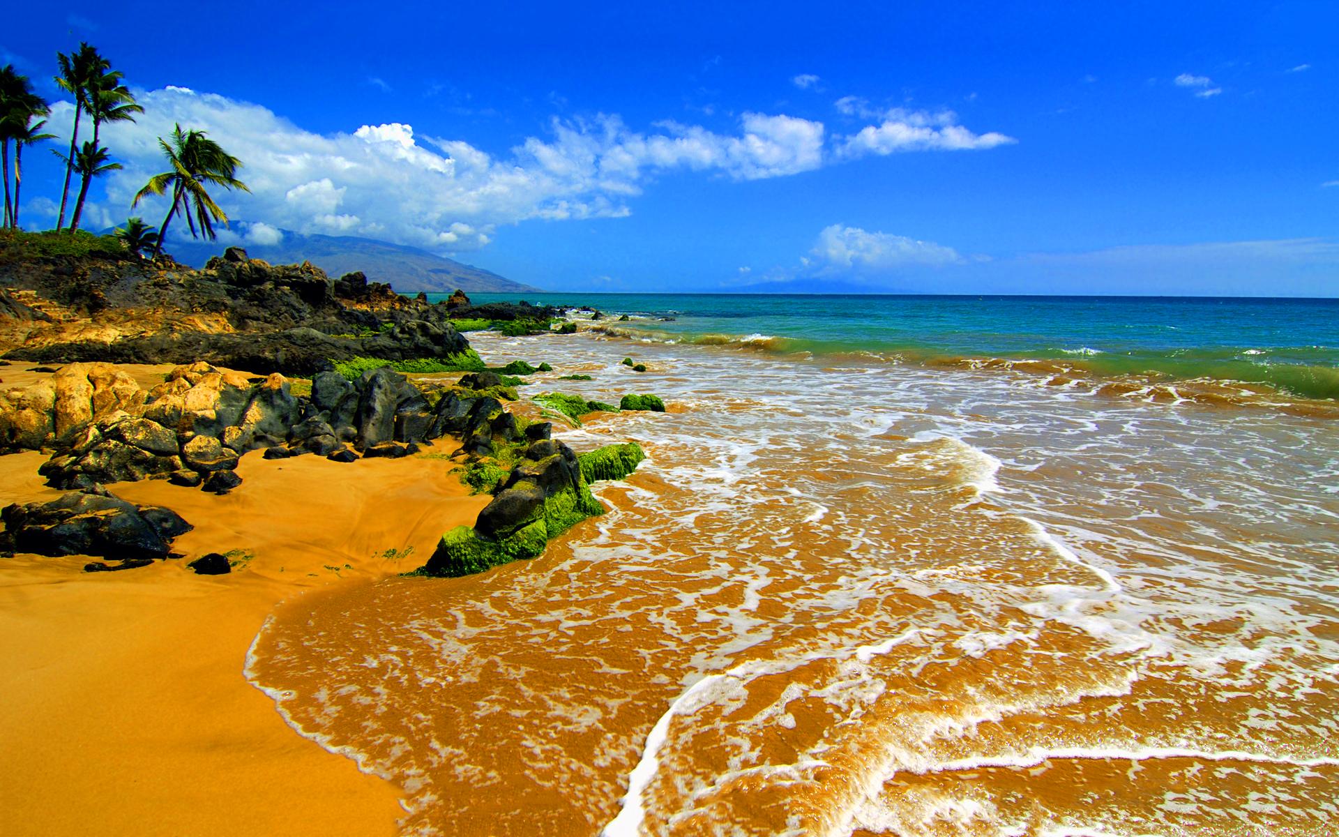 beach maui
