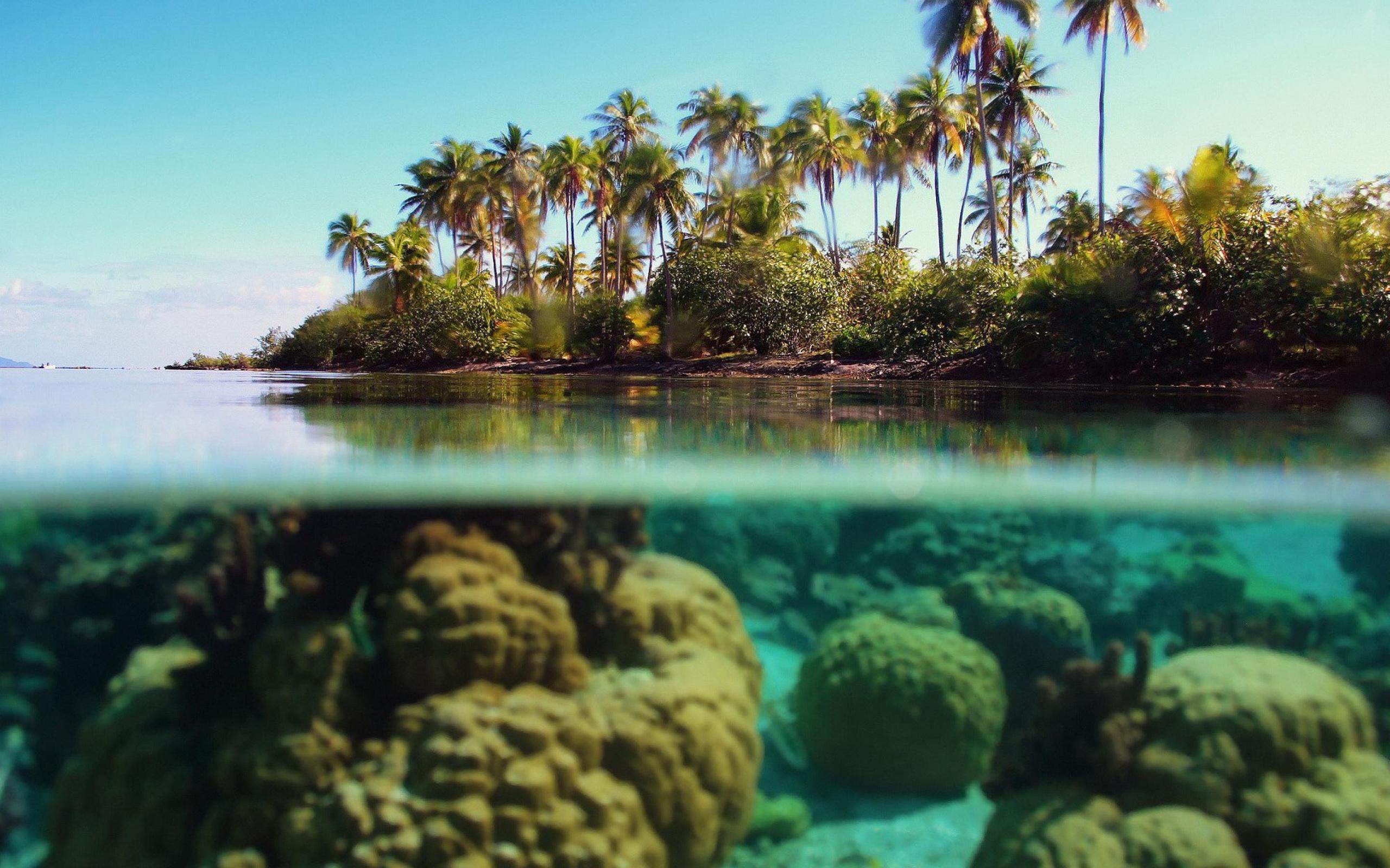 beach underwater
