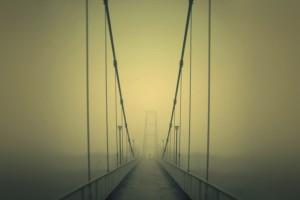 beautiful fog backgrounds