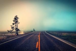 beautiful landscape fog