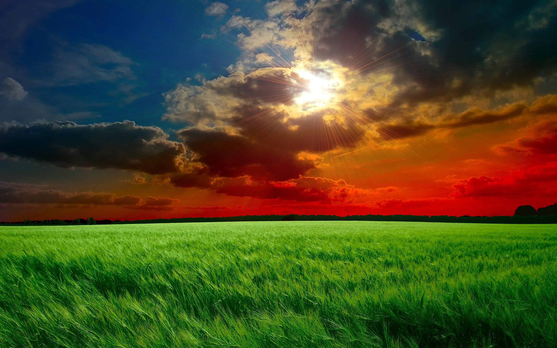 beautiful sunset wallpaper nature