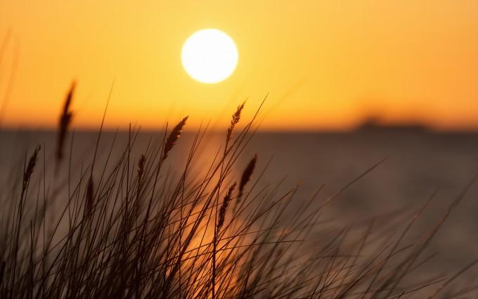 beautiful sunset wallpaper sun
