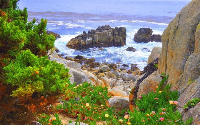 beautiful wallpaper coastal