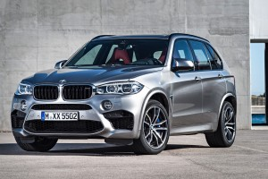 bmw x5 computer download