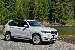 bmw x5 white nature hd