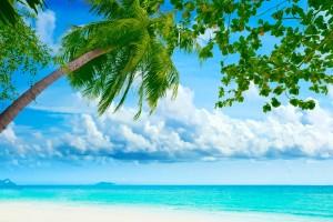 breathtaking beach background